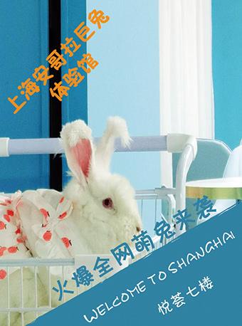 上海安哥拉巨兔体验馆2.0 悦荟广场7楼
