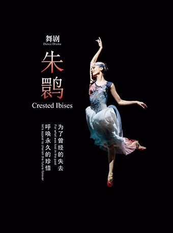 上海歌舞团舞剧《朱鹮》