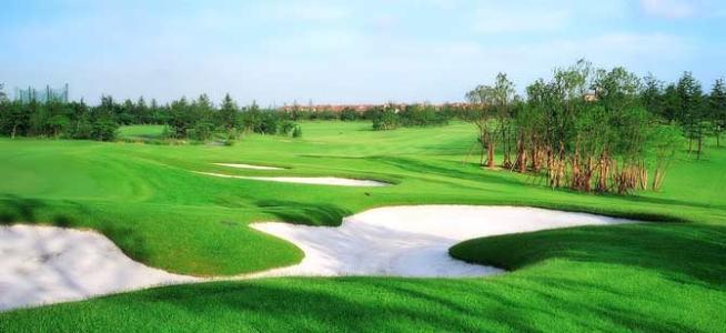 上海汇丰高尔夫冠军赛门票预售中,十月等你来观赛